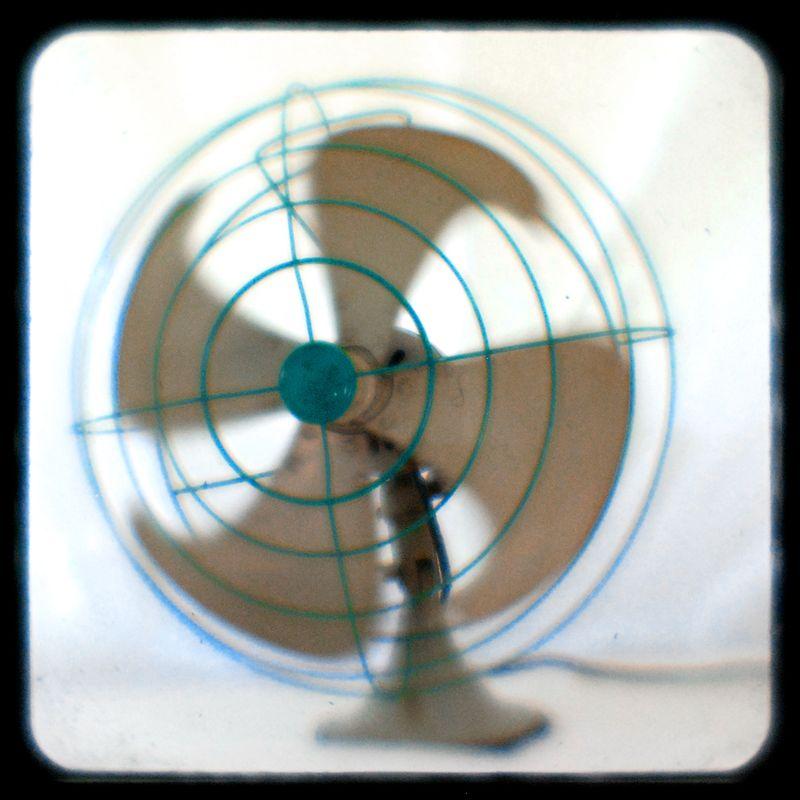 Fan_6